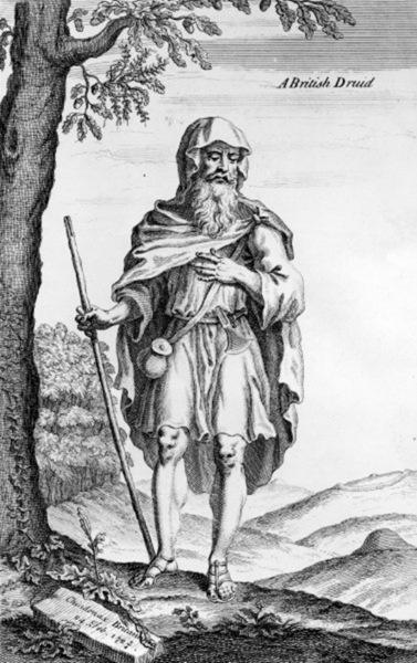 a druid